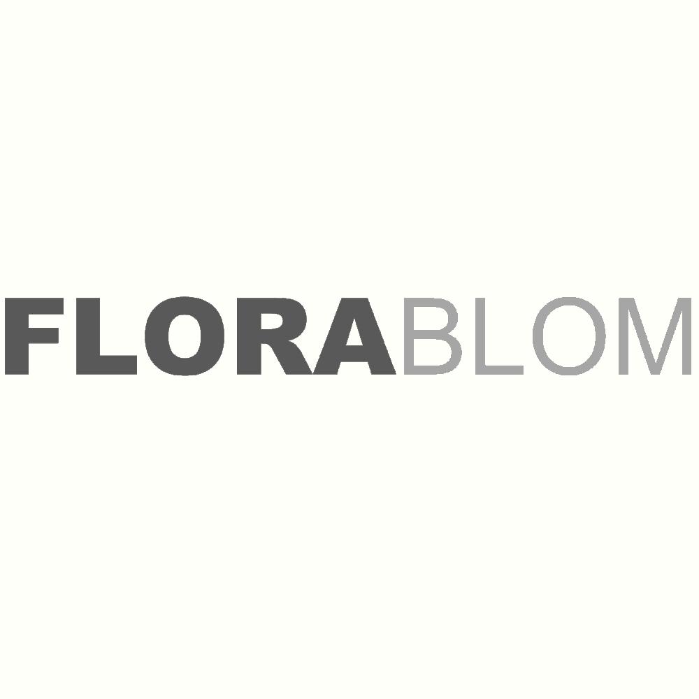 Florablom.com